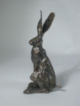 Sitting Hare small.jpg