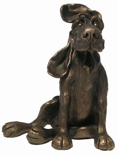 Bertie - my ears just won't stay down!