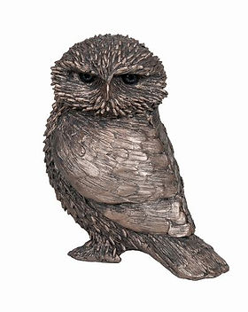 olly-little-owl.jpg