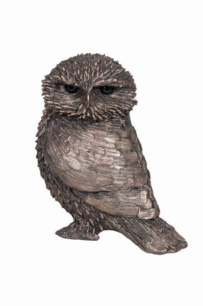 Olly - Little Owl