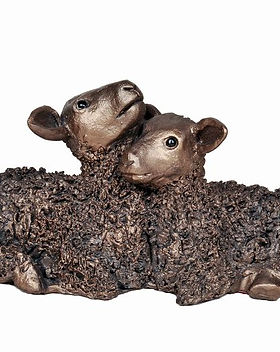 Twin Lambs - medium.jpg