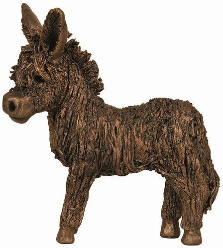 Donkey Foal - standing