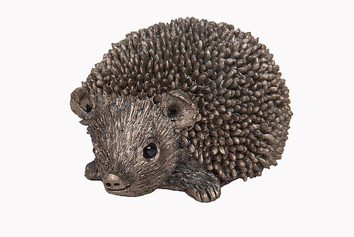 Squeak-Junior Hedgehog