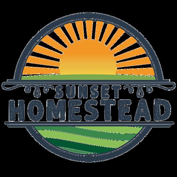 Sunset Homestead