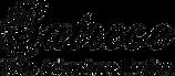 Satrece Official Logo