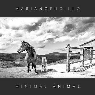 MINIMAL ANIMAL COVER -10.jpg