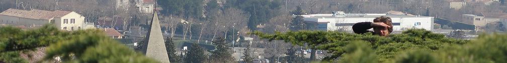 new banniere arbre.jpg
