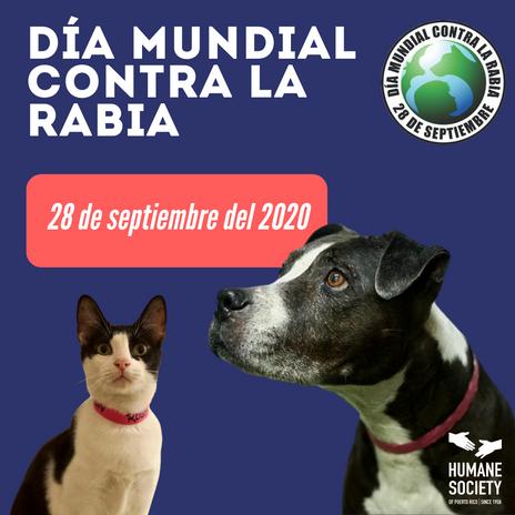 Día Mundial Contra la Rabia 2020