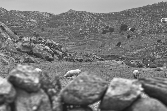 dry Greek scene