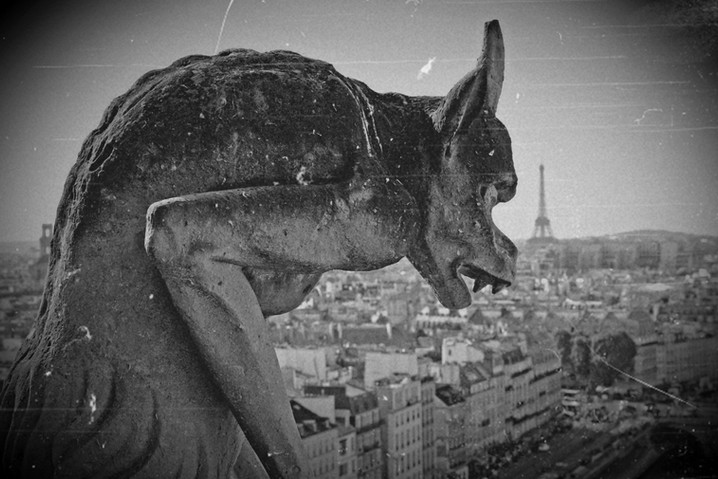 Gargoyle Notre-Dame