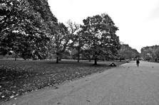 Kensigton Park
