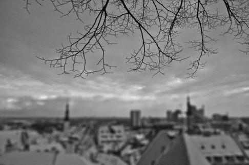 Toompea overlook