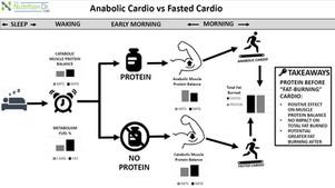Go Muscle Cardio vs Fasted Cardio!