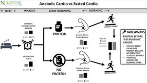 Go Muscle Cardio vs Fasted Cardio!
