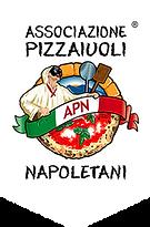 apn-logo-badge.png