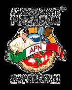 apn-logo-01.png