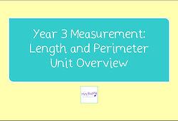 Year 3 length and perimeter