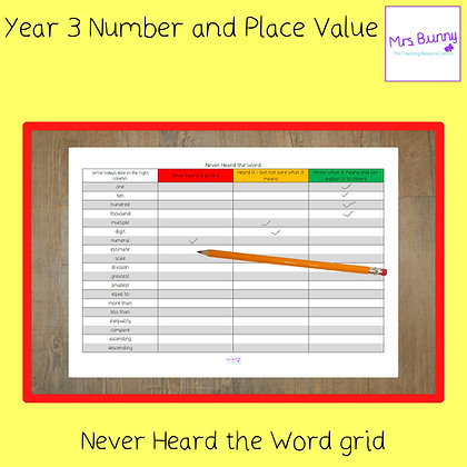 Never Heard the Word Grid (Year 3 Number and Place Value)