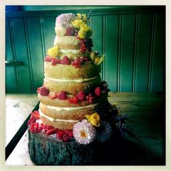Lis and Alex's Wedding Cake.