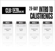 IntroToCalisthenics-28DayCycle.jpg