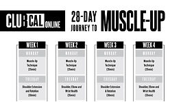ClubCalisthenics-2-28Day-WorkoutPLan.jpg