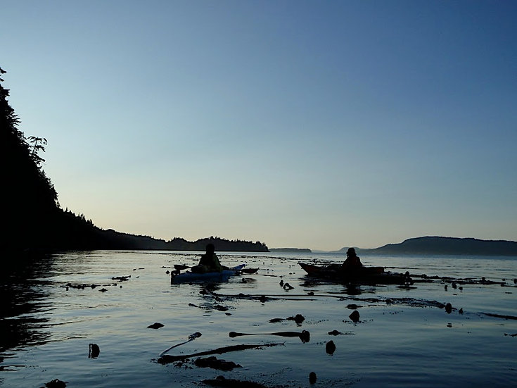 Canada Vancouver Gulf Islands Sea kayaking