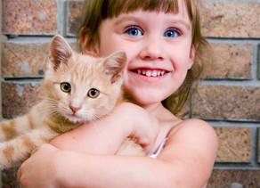 7 Human Behaviors Cats Hate