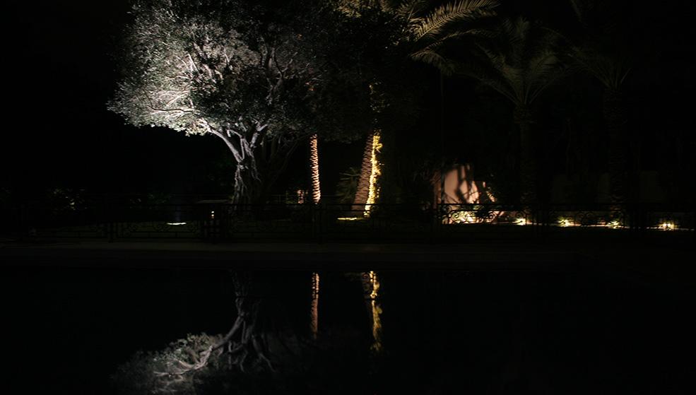 Privet Garden in Kfar Shmaryahu