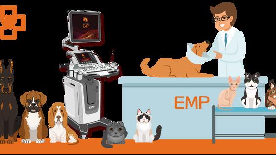 恩普医疗超声设备实操培训会圆满召开
