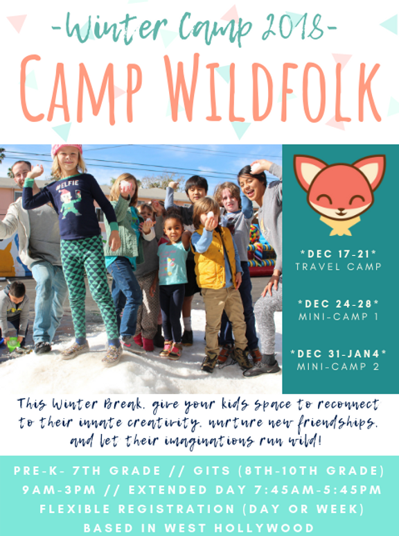 Winter Camp Flyer 2018 (2).png