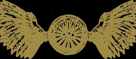 Designing the Insignia