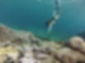 underwater africa snorkel
