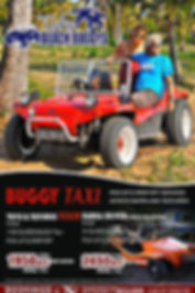Tofo Beach Buggy's