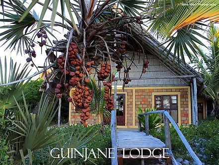guinjata accommodation