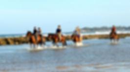 beach tofo horse riding