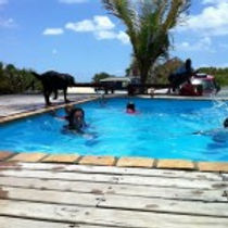 swimming pool barra