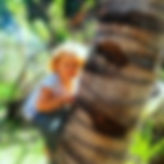 climbing a tree in Inhambane