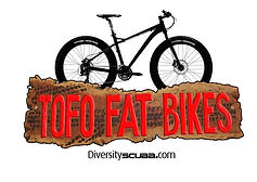 tofo bike rental