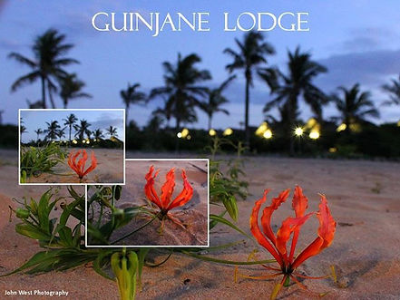 accommodation on the beach mozambique