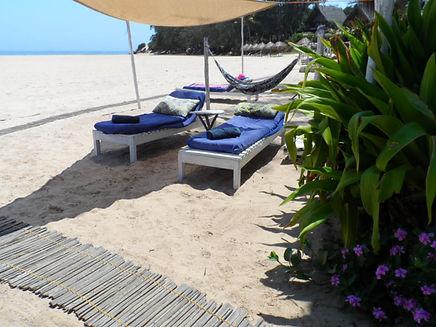 hammocks on the beach tofo