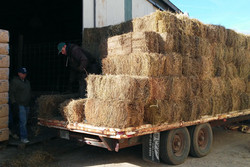 Hay Shipment