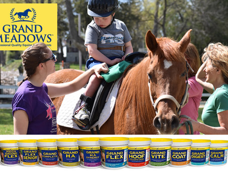 Grand Meadows Sponsors Equine Health