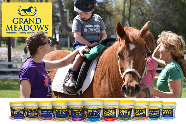 Grand Meadows Sponsors Ride On St. Louis
