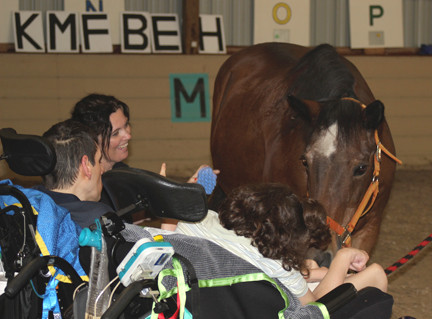 Ride On St. Louis Equine-Assisted Unmounted Activities