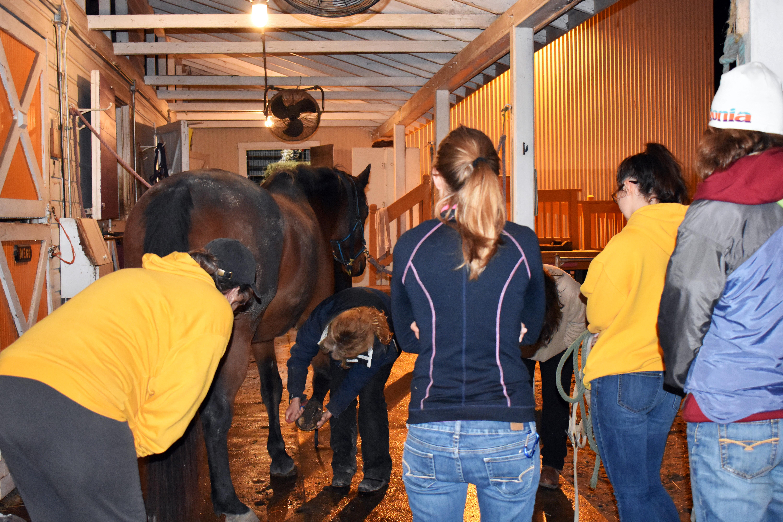 Ride On St. Louis Volunteer Training