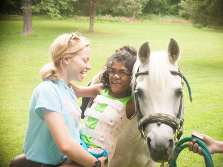 Therapy Horses Travel for Special Camp