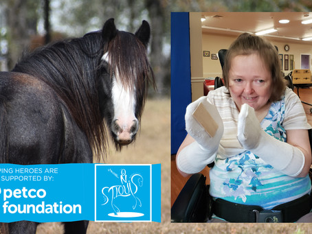 Petco Foundation Invests in Ride On St. Louis's Life-Changing Work through Horses & Program
