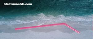 Will the anti-plastic straws wave hit Singapore?