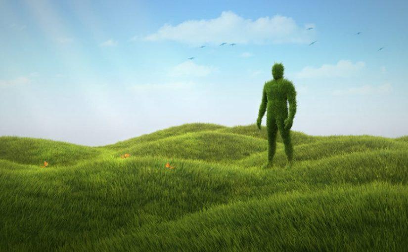 grassman.jpg