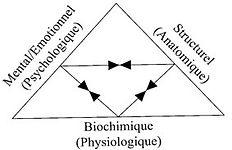 Triangle_santé.jpg